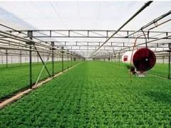 物联网技术在现代农业中的应用